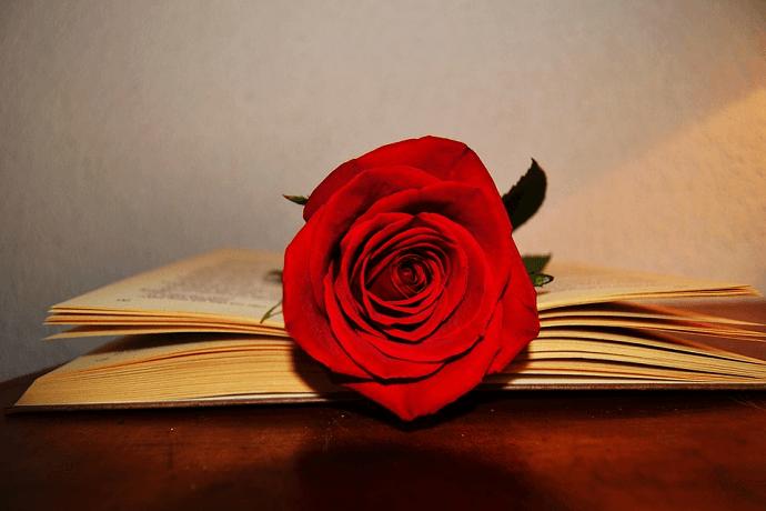Libros EFPA para Sant Jordi
